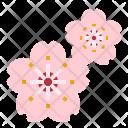 Sakura Flower Perfume Icon