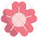 Sakura Flower Japanese Icon