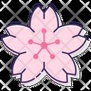 Msakura Flower Sakura Flower Flower Icon