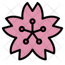 Sakura Flower Cherry Blossom Japan Spring Pink Icon