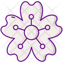 Msbd Icon