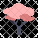 Sakura Tree Wish Icon