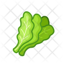 Salad Vegetables Vegetarian Icon
