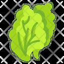 Salad Vegetable Food Icon