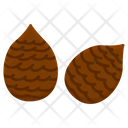 Salak Fruit Healthy Icon