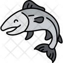 Salmon Salmon Fish Water Ceature Icon