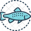 Salmon Fish Icon