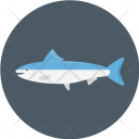 Salmon Sea Fish Icon