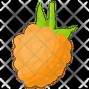 Salmonberries Icon