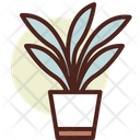 Sansevieria Icon