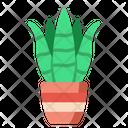 Sansevieria Green Leaf Icon