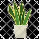 Sansevieria Potted Plant Icon