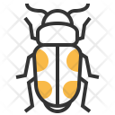 Sap Beetle Insect Icon