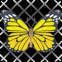 Garden Longwings Sapho Icon