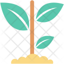 Sapling Icon