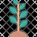 Sapling Plant Planting Icon