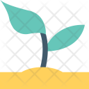 Sapling Plant Seedling Icon
