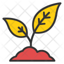 Saplings Seedlings Baby Icon