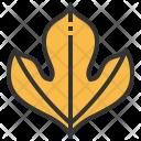 Sassafras Leaf Greenery Icon