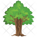 Sassafras Tree Icon