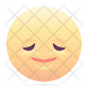 Satisfied Emoji Smiley Icon