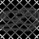 Saurus Skeleton Icon