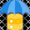 Save Database Icon