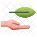 Hand Holding Leaf Hand Hold Icon
