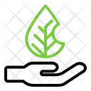 Save Environment Icon