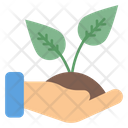 Save Plant Ecology Save Tree Icon
