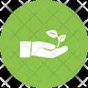Plant Eco Friendly Icon