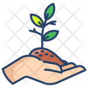 Agive Plant Icon