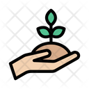 Growth Increase Care Icon