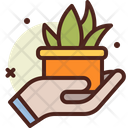 Save Plant Hold Green Save Green Icon