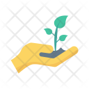 Save Plant Growth Icon