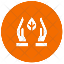 Growth Plant Care Icon