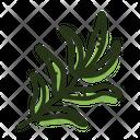 Savory Plant Spice Icon
