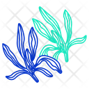 Savory Herbal Spices Icon