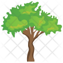 Saw tooth Oak Icon