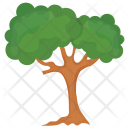 Sawtooth Oak Icon
