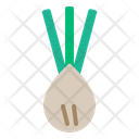 Scallion Vegetable Healthy Icon