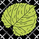 Scalloped Leaf Leaf Foliage Icon