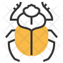 Scarab Beetle Insect Icon