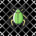Scarab Animal Wildlife Icon