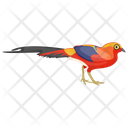 Scarlet Macaw Icon