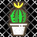 Schlosser cactus Icon