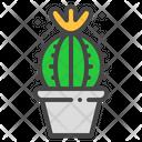 Schlosser Cactus Succulent Icon