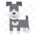 Schnauzer Dog Icon