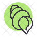 Sea Seashell Pearl Icon