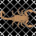 Scorpio Sign Horoscope Icon